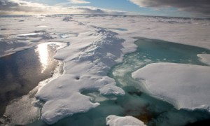 Melting-ice-in-the-Arctic-006