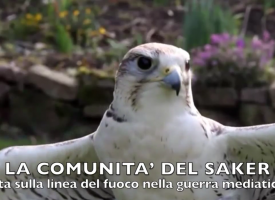 Video della Saker Community