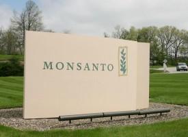 La Germania compra Monsanto – e vende il TTIP all'Europa