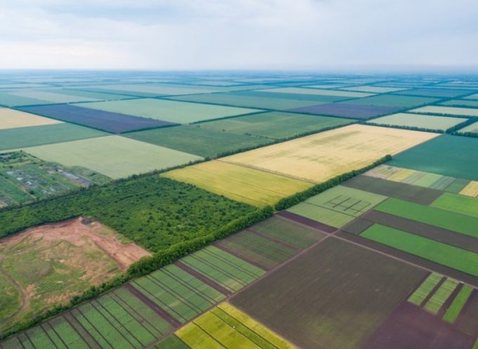 La riforma terriera di Zelenskyj: un altro passo verso la disintegrazione dell'Ucraina