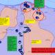 Proseguono i combattimenti a sud di Tripoli 22-5-2020
