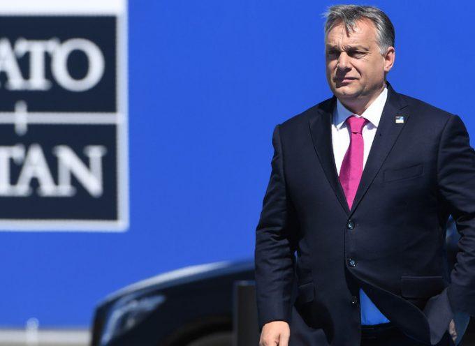 """Gruppo filo-NATO ammette di non preoccuparsi del disprezzo di Orbán per i """"valori occidentali"""", finché l'Ungheria contrasterà la Russia"""